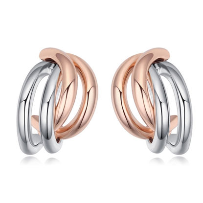 Immagine di Double Colors Plated Gold Earrings