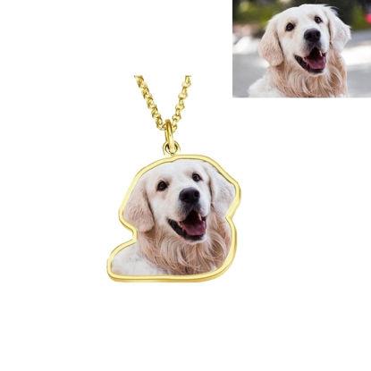 Imagen de Collar de foto Collar de regalo perfecto Platino plateado Plata