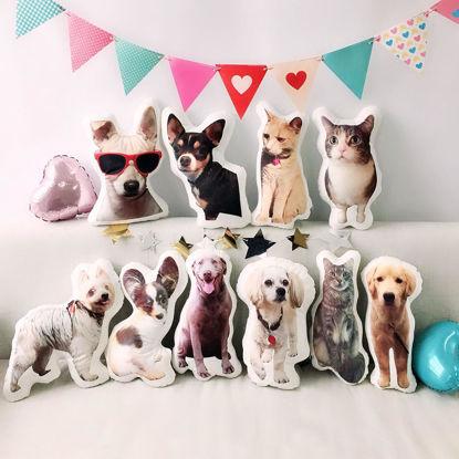 Immagine di Cuscino 3D personalizzato per animali domestici - Personalizza con il tuo adorabile animale domestico