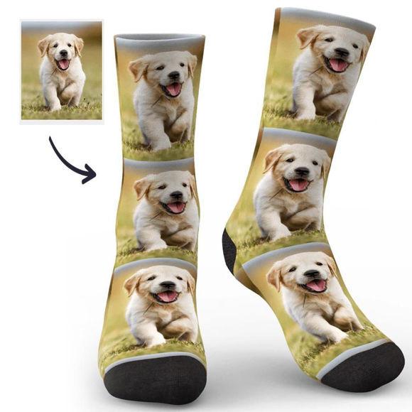 Immagine di Personalizza i tuoi calzini per il viso per il tuo animale domestico